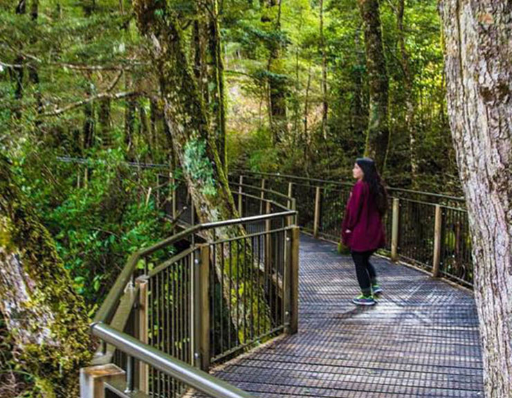 New Zealand study abroad – photo story by Julie Huang