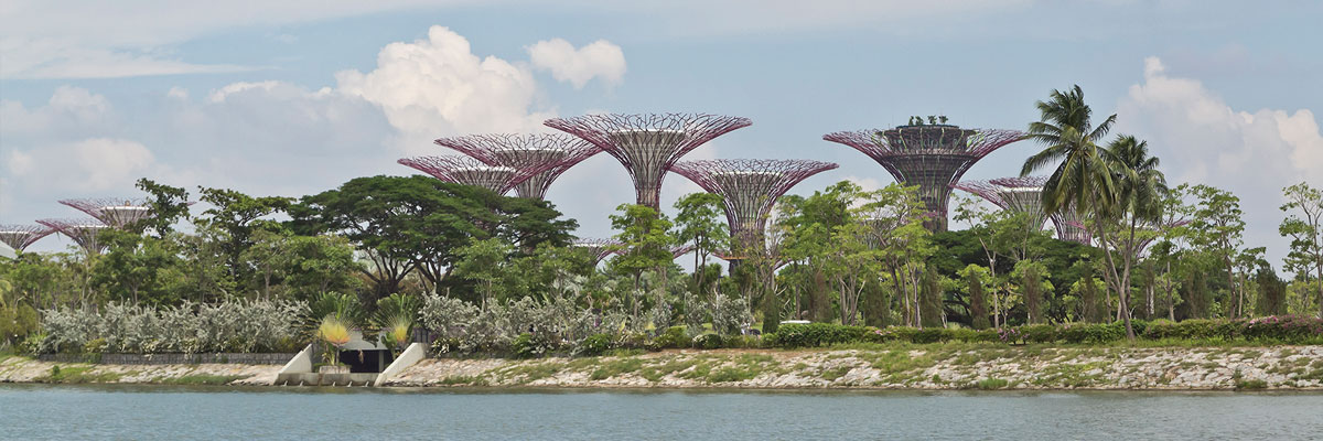 View of Gardens by the Bay in Singapore, Singapore.