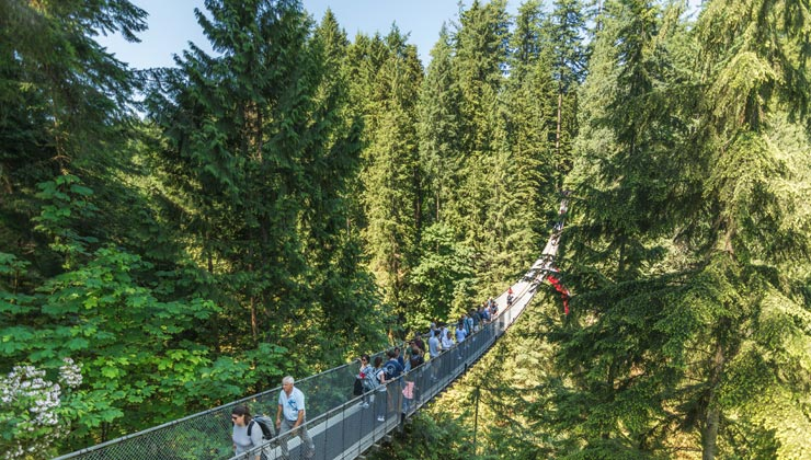 People crossing the famous Capilano suspension bridge on a sunny day.