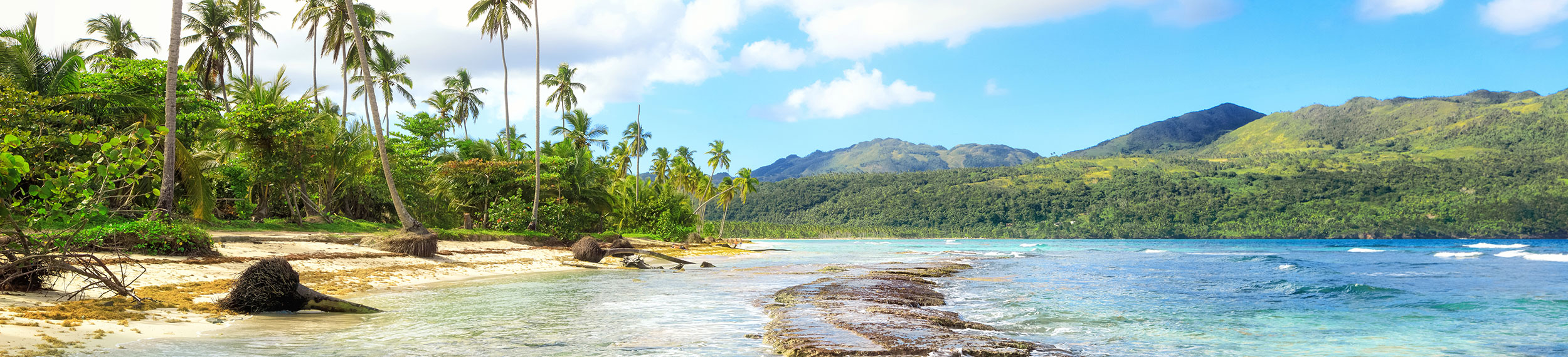 Panorama of famous secluded beach of Rincon with aqua colored water and palm trees on a beautiful day in Las Galeras, Dominican Republic.