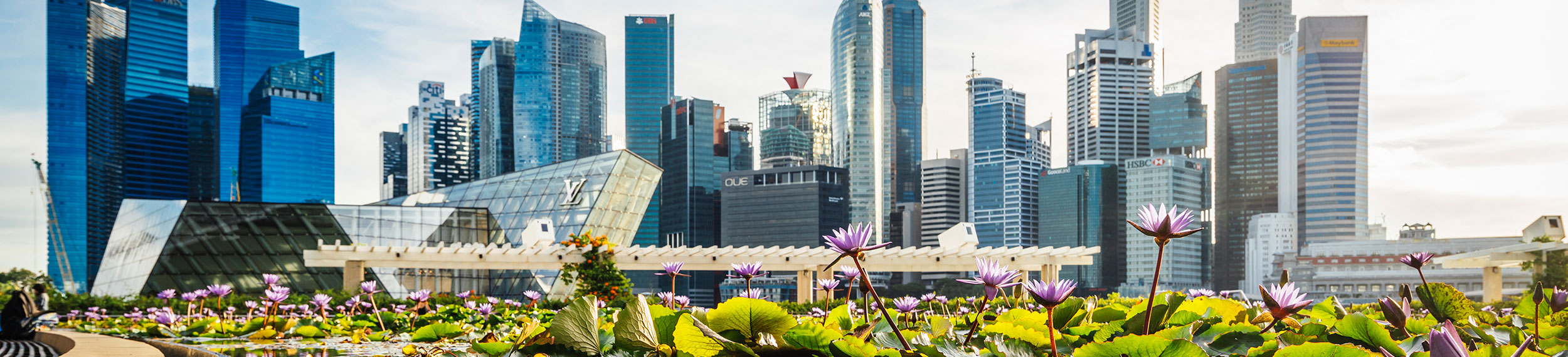 Singapore Skyline near Marina Bay and pond with lilies in the foreground and central business district at daytime in the background.