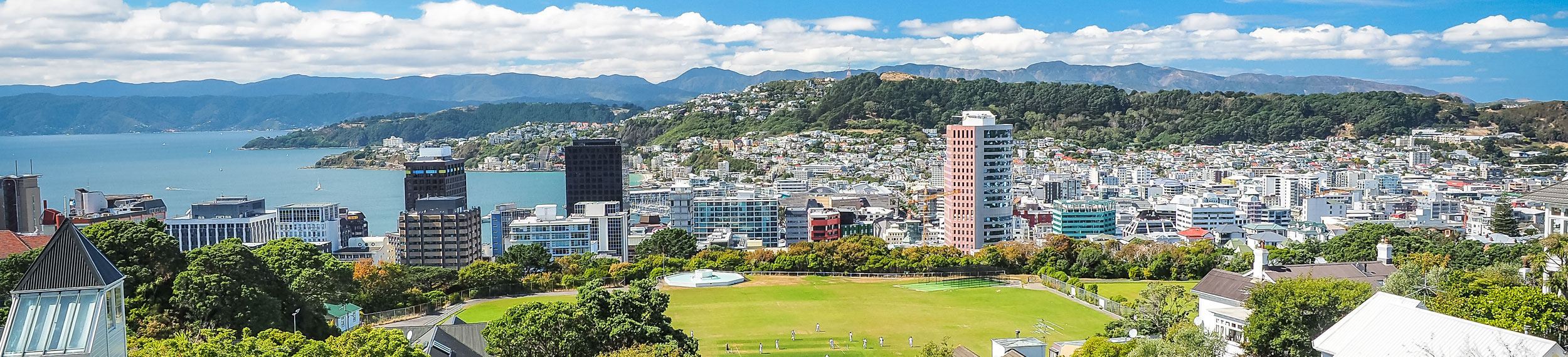 A view of the city with tall buildings, the water and a green lawn in Wellington, New Zealand.